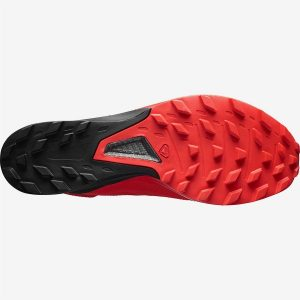 SALOMON SLAB SENSE 8 SG